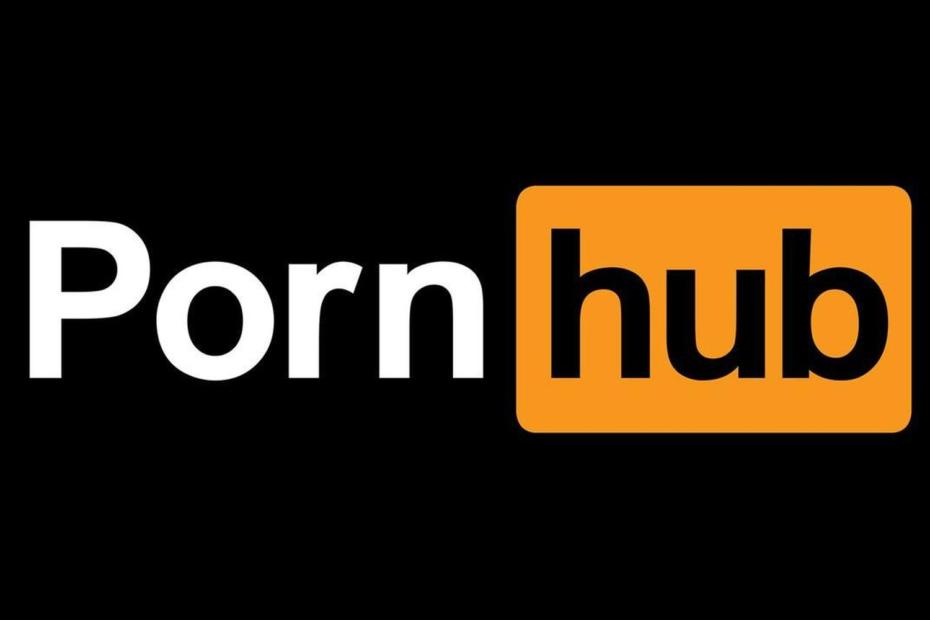 Pornhub Raport